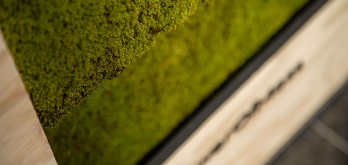 Powerofmoss, l'un des trois lauréats régionaux, propose des solutions de végétalisation connectée